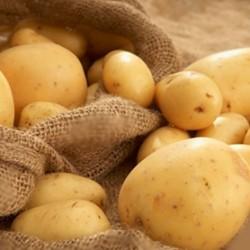 6 lý do bạn không nên loại khoai tây khỏi thực đơn