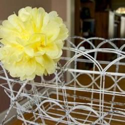 Hoa giấy tô điểm cho bàn ăn