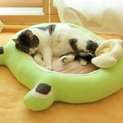 Tự  làm giường nệm cho thú cưng của bạn