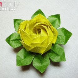 Hướng dẫn làm hoa sen bằng giấy nhún cực đẹp